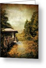 Dock On The Wetlands Greeting Card