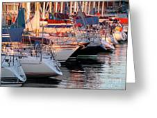 Docked Yatchs Greeting Card