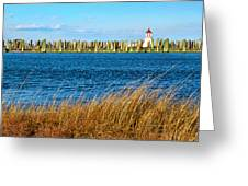 Docks On Cape May Harbor Greeting Card