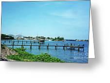 Docks On The Intracoastal Greeting Card