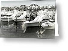Dockside Greeting Card