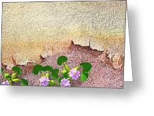 Dockyard Flowers Greeting Card by Jan Hattingh