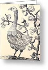 Dodo Bird Rodriguez Solitaire, Extinct Greeting Card