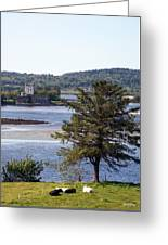 Doe Castle ,donegal Greeting Card