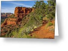 Doe Mountain Trail Greeting Card