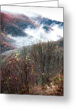 Doe On Autumn Ridge Greeting Card