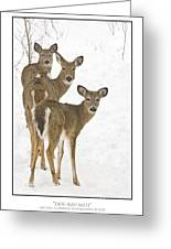Doe-ray-meh Greeting Card