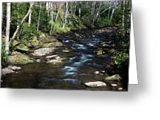 Doe River In April Greeting Card