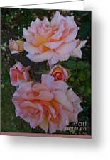 Does Roses Has Thorns Or Does Thorns Has Roses Greeting Card
