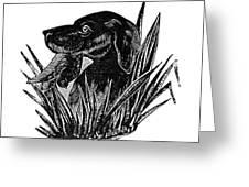 Dog, 19th Century Greeting Card