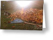 Dog And Autumn Leaves Greeting Card