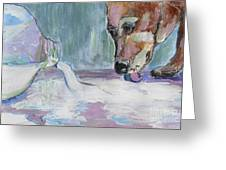 Dog And Spilled Milk Greeting Card