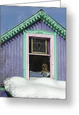 Dog Days Of Winter Greeting Card