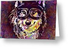 Dog Funny Cheeky Cap Animal Wild  Greeting Card