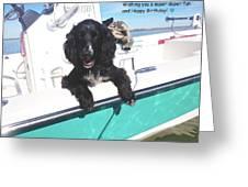 Dog Happy Birthday Card Greeting Card