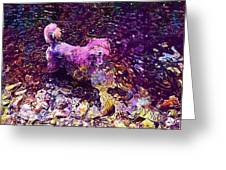 Dog Happy Nature River  Greeting Card