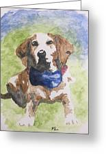 Dog In Bow Tie Greeting Card