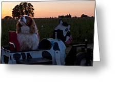 Dog In Cow Wagon  Greeting Card