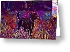 Dog Labrador Animal Canidae Canine  Greeting Card