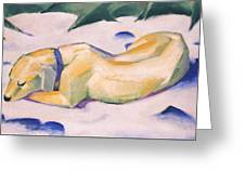 Dog Lying In The Snow C.1911 Greeting Card