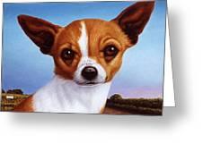Dog-nature 3 Greeting Card