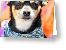 Dog Portrait. Greeting Card