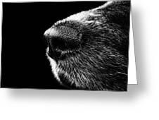 Dog Smeller Greeting Card
