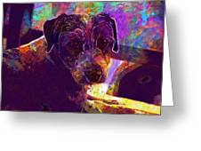 Dog Terrier Russell Pet Animal  Greeting Card