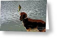 Dog Vs Perch 4 Greeting Card