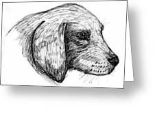 Doggie Greeting Card