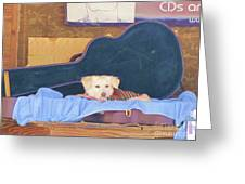 Doggy In The Guitar Case Greeting Card