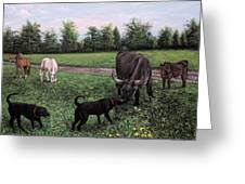 Dogs Meeting Bull Greeting Card