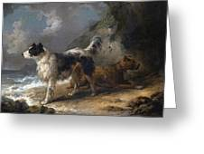 Dogs On The Coast Greeting Card