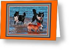 Dogs Playing On The Beach No. 2 L A With Decorative Ornate Printed Frame. Greeting Card