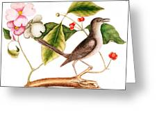 Dogwood  Cornus Florida, And Mocking Bird  Greeting Card