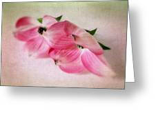 Dogwood Duet Greeting Card