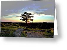 Dogwood On Little Round Top Greeting Card