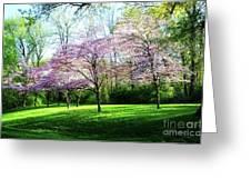 Dogwood Spring Greeting Card