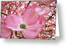 Dogwood Tree 1 Pink Dogwood Flowers Artwork Art Prints Canvas Framed Cards Greeting Card