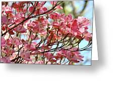 Dogwood Tree Landscape Art Prints Blue Sky Baslee Troutman Greeting Card