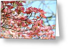 Dogwood Tree Landscape Pink Dogwood Flowers Art Greeting Card