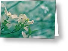 Dogwoods Greeting Card