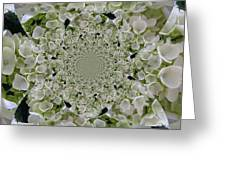 Doily Of Flowers Greeting Card