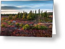Dolly Sods Wilderness Area West Virginia Greeting Card