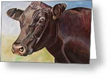Dolly The Angus Cow Greeting Card