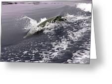 Runnin' Dolphin  Greeting Card