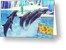 Dolphin Show Greeting Card