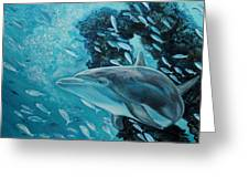 Dolphin With Small Fish Greeting Card