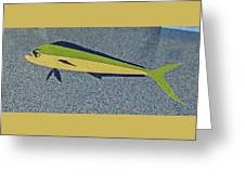 Dolphinfish Inlay On Alabama Welcome Center Floor Greeting Card