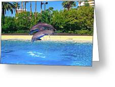 Dolphins Dance Greeting Card
